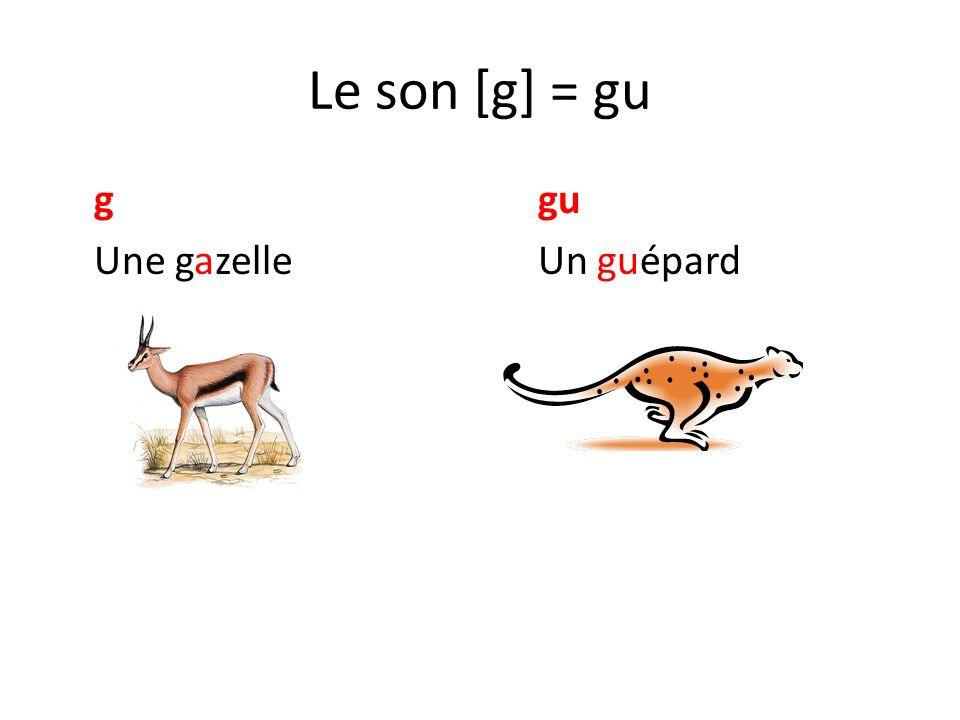 Le son [g] = gu g gu Une gazelle Un guépard